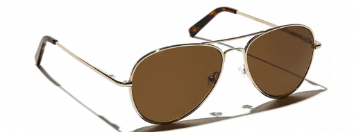 Moscot Jacob Gold 2